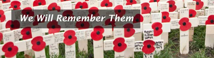 Poppies on crosses to remember the fallen - Royal British Legion image